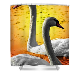 Shower Curtain featuring the photograph Sunset Swans 2 by Brian Stevens