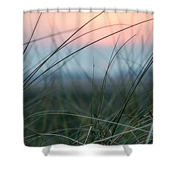 Sunset  Through The Marsh Grass Shower Curtain