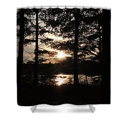 Sunset Through The Pines Shower Curtain by Teresa Schomig