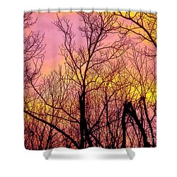 Sunset Through The Trees Shower Curtain