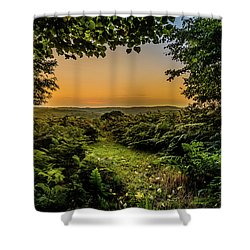 Sunset Through Trees Shower Curtain