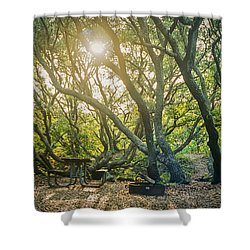Sunset Thru The Trees Shower Curtain by Scott Meyer