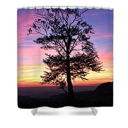 Sunset Tree Shower Curtain