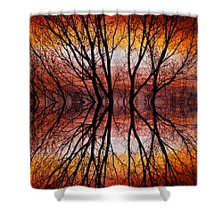 Sunset Tree Silhouette Abstract 2 Shower Curtain by James BO  Insogna