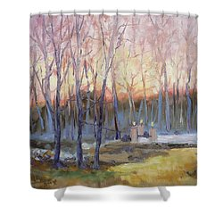 Sunset Trees Shower Curtain by Irek Szelag