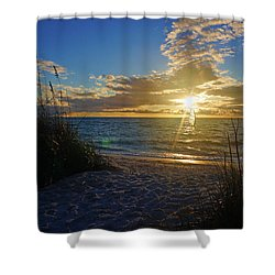 Sunset Windsurfer Shower Curtain by Robb Stan