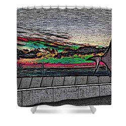 Sunset With The Eagle Shower Curtain by Tim Allen