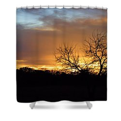 Sunset With Tree Silhouette Shower Curtain