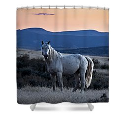 Sunset With Wild Stallion Tripod In Sand Wash Basin Shower Curtain