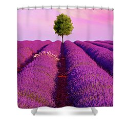 Sunsets Are Purple Shower Curtain