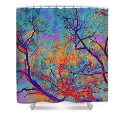 Sunsets Embrace Shower Curtain