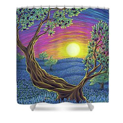 Sunsets Gift Shower Curtain