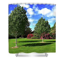 Sunshine And Shadows Shower Curtain