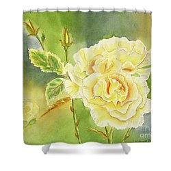 Sunshine And Yellow Roses Shower Curtain by Kathryn Duncan