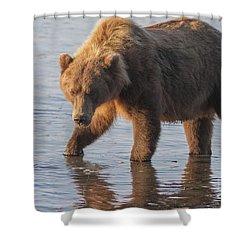 sunshine bear shower curtain
