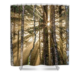 Sunshine Forest Shower Curtain