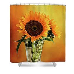 Sunshine In A Vase Shower Curtain by Diane Schuster