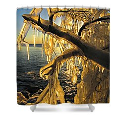 Shower Curtain featuring the photograph Sunshine Is Fine by Greta Larson Photography
