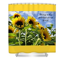 Shower Curtain featuring the photograph Sunshine Lollipops Grace by Diane E Berry