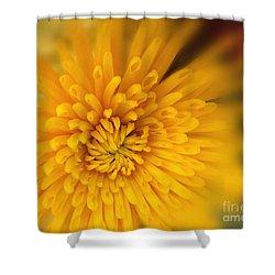 Sunshine Mum Shower Curtain by Kathy M Krause