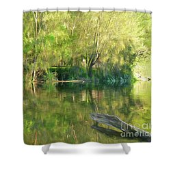 Shower Curtain featuring the photograph Sunshine On Nature By Kaye Menner by Kaye Menner