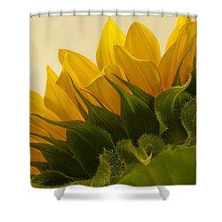 Sunshine Under The Petals Shower Curtain