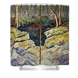 Shower Curtain featuring the painting Sunstruck by Carolyn Rosenberger