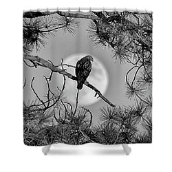 Super Moon Hawk Shower Curtain