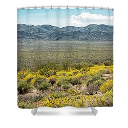 Superbloom Paradise Shower Curtain by Amyn Nasser