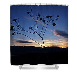 Superbloom Sunset In Death Valley 101 Shower Curtain