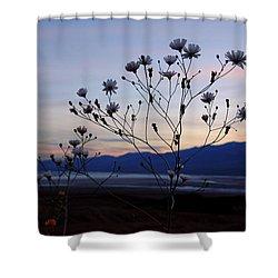 Superbloom Sunset In Death Valley 102 Shower Curtain