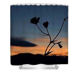 Superbloom Sunset In Death Valley 105 Shower Curtain