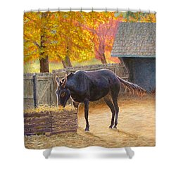 Supper Time Shower Curtain by Joe Bergholm