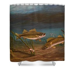 Supper Time Shower Curtain by Sheri Keith