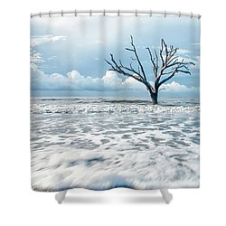 Surfside Tree Shower Curtain by Phyllis Peterson