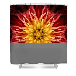 Surreal Flower No.1 Shower Curtain