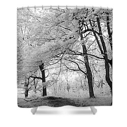 Shower Curtain featuring the photograph Surreal Infrared Black White Nature Trees - Haunting Black White Trees Nature Infrared by Kathy Fornal