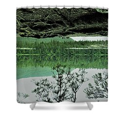 Surreal Shower Curtain