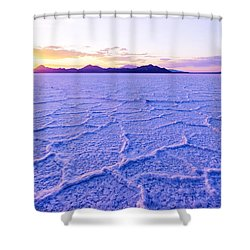 Surreal Salt Shower Curtain