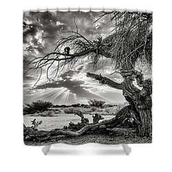 Shower Curtain featuring the photograph Surrealism At Its Best by Arik Baltinester