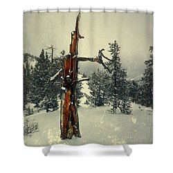 Surround Shower Curtain