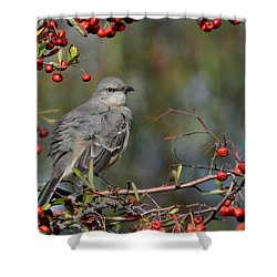 Surrounded By Berries Shower Curtain