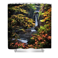 Surrounded By Fall Shower Curtain