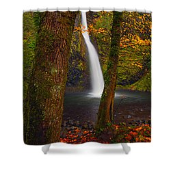 Surrounded By The Season Shower Curtain by Mike  Dawson