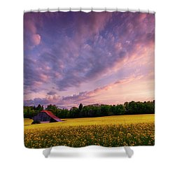 Surrounded Shower Curtain by Dominique Dubied