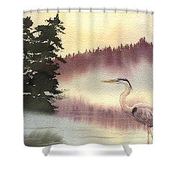 Surveyor Of The Morning Shower Curtain