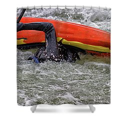 Survival In Cold Waters Shower Curtain by Dennis Baswell