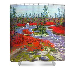 Susie Lake Barrens Shower Curtain