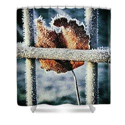 Suspended Shower Curtain by Karen Stahlros
