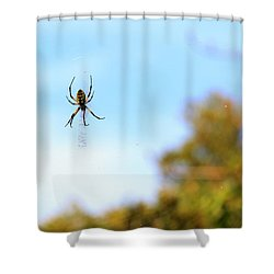 Suspended Spider Shower Curtain